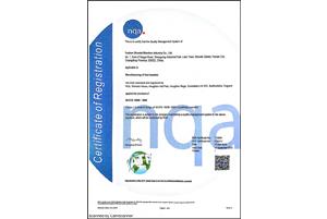 TS16949证书(英文)